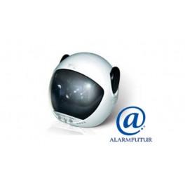 Camera video 3G surveillance GSM